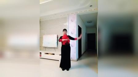 爱贞广场舞(我亲爱的爸妈)编舞演示爱贞
