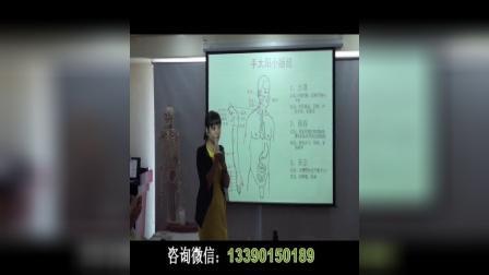 中医经络--手太阳小肠经视频讲解