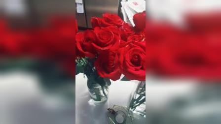 白色情人节而已,竟然送我那么多玫瑰花,这是什么意思呢?