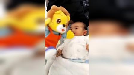 宝宝你好,我是可可狮