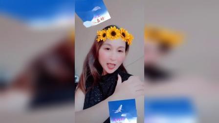 赵茉莉的小视频  酒醉的蝴蝶