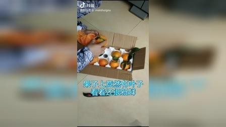 在懂果帝家买的爱媛橙,懂果帝!