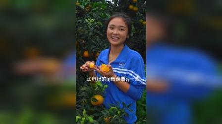 丹棱的爱媛果冻橙 特别好吃 大家尝尝吧