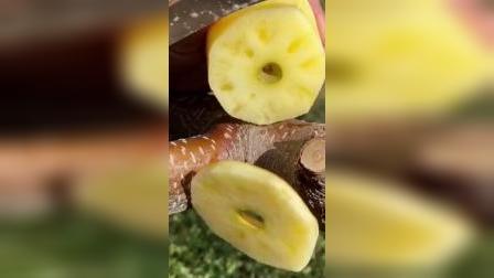 两个月切了无数个苹果,为什么都不买我家的果子