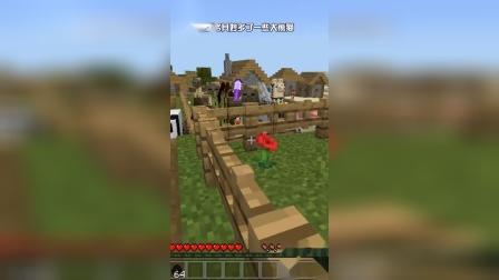 我的世界:村庄中还有新保安?大熊猫太可爱了吧!