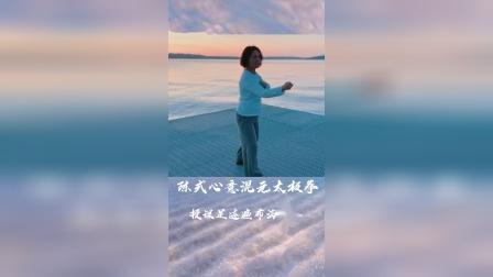 陈式心意混元太极拳24式 冯志强先生之女冯秀茜老师在美国的授课习练视频