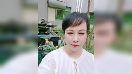 zhanghongaaa自拍:将这诗情画意的景发送到优酷保存,免得视频找不到!