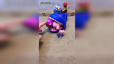 少儿益智玩具:大鲨鱼抓走了猪奶奶.