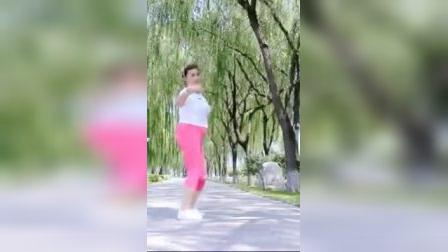 我在彩苒广场舞正背面【问佛】最新原创好听的网络佛歌截了一段小视频