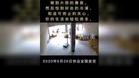 颍上县洪华粉丝厂,牛肉汤专用粉丝,2020年9月26日快运发货监控实拍视频