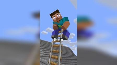 我的世界:你才是梯子,你全家都是梯子
