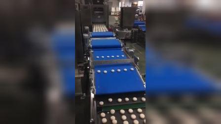 全自动汉堡胚生产线,匹配自动分块搓圆,自动压扁装盘