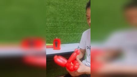 气球培训~玫瑰花完整教程