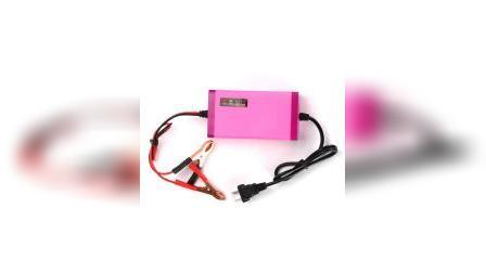 君晓天云徽农12v伏踏板机车电瓶充电器全自动通用型智能蓄电池充电机