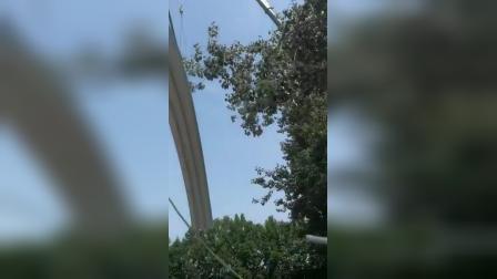 山东潍坊吊装拱形屋顶