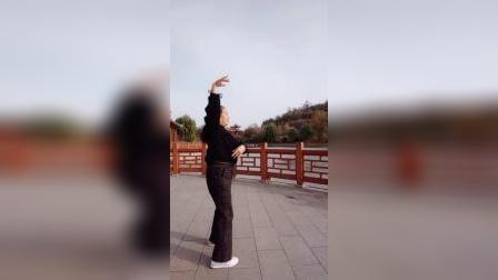 宜阳明萱广场舞(又见雪花飞)32步