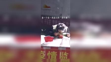 持续关注  驰援湖北医疗队到达武汉肺科医院开始工作 【战疫英雄赞】