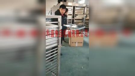 草药真空冻干机 鲍鱼多春鱼真空干燥机 蔬果冷冻干燥机  宠粮食品低温冻干机