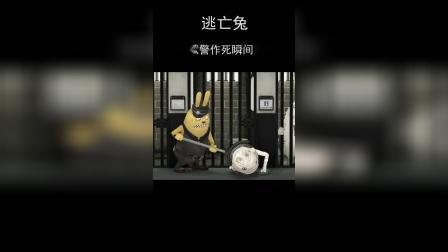 《逃亡兔》盘点狱警作瞬间(三)