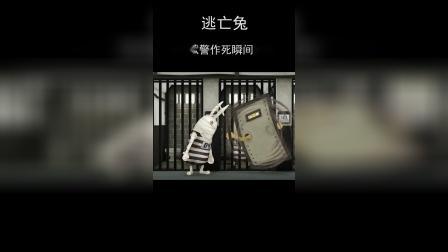 《逃亡兔》盘点狱警作瞬间(四)
