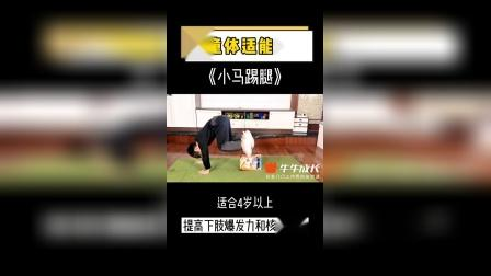 小马踢腿,增强下肢核心爆发力