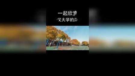 风景混剪:一起来欣赏武汉大学的风采!