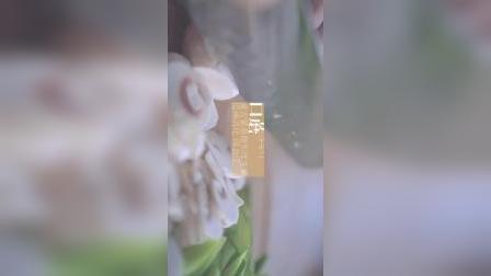 「厨娘物语」山海芦笋虾仁老少皆宜的一道菜,清炒既能吃到食物最原始的味道还能吃出健康和营养