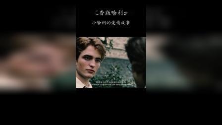 七里香版哈利波特:小哈利的爱情故事
