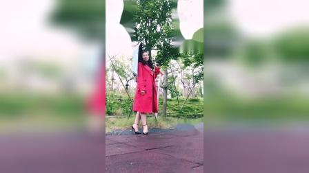 千慧广场舞自由拍