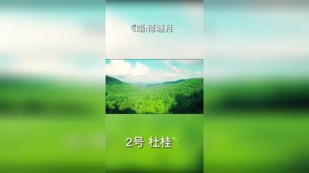 森林里的家 《荷塘月色》大箐山县 杜桂芝 女 62岁