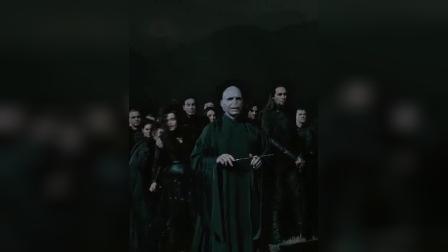 哈利波特与死亡圣器下竖版