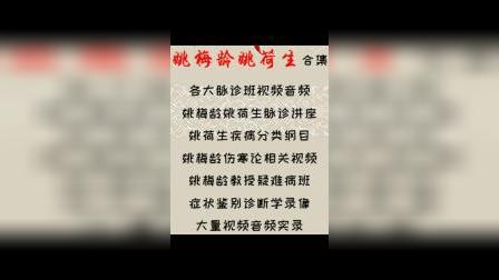 姚梅龄 姚荷生 脉诊 伤寒 中医培训班视频音频文档 中医危重急症.mp4