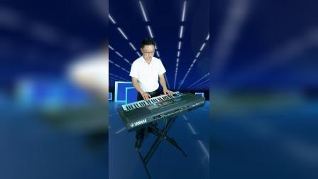 《军中绿花》DJ版电子琴音乐