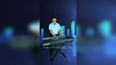 《口是心非》电子琴音乐