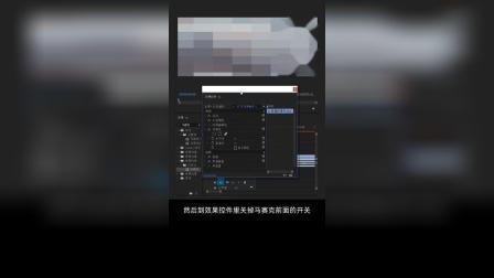 24_自动跟踪马赛克剪辑技巧剪辑教程