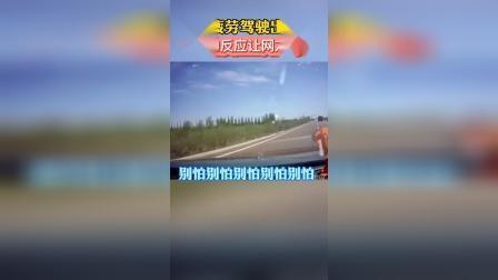 老公疲劳驾驶出车祸,老婆反应却让网友酸了#夫妻 #秀恩爱