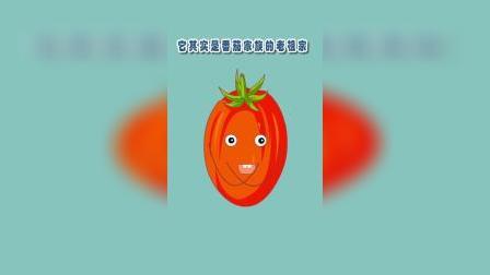 你知道小番茄个大番茄是什么关系吗?