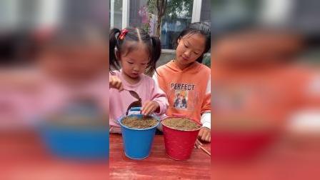 童年趣事:萌娃们在花盆里种棒棒糖和西瓜