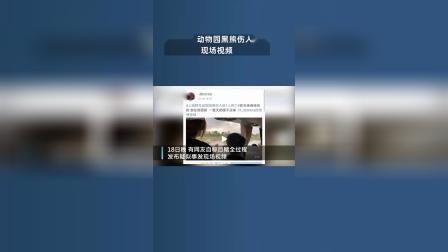 上海野生动物园黑熊伤人视频曝光:一群熊聚拢围在一起