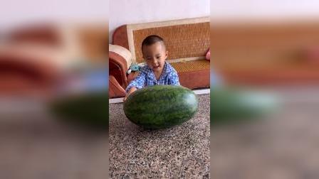 童年趣事:宝贝抱着一个大西瓜