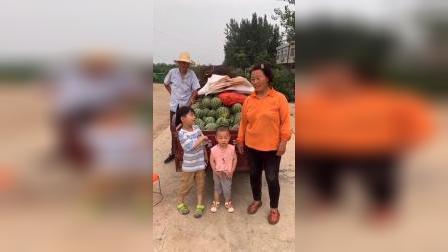 少儿:凯凯跟着爷爷去卖西瓜