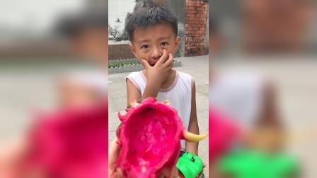 趣味童年:小萌娃这个火龙果是不是你吃的