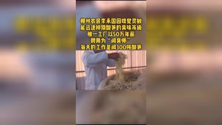 """年薪50万!""""螺蛳粉闻臭师""""日闻酸笋300吨"""