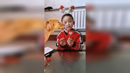 童年乐趣:小狗吃雪糕了