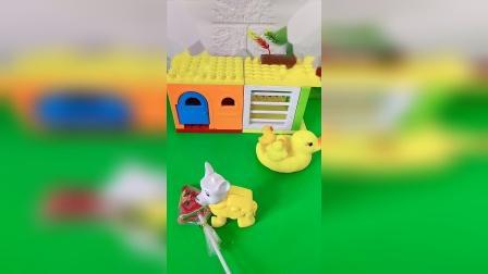 小鸭子想吃糖,没有跟妈妈打招呼,直接就下来了!