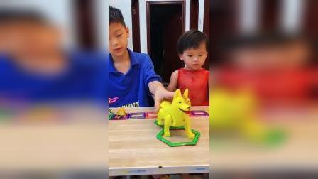 童年趣事:小哥哥帮小狗狗盖房子了
