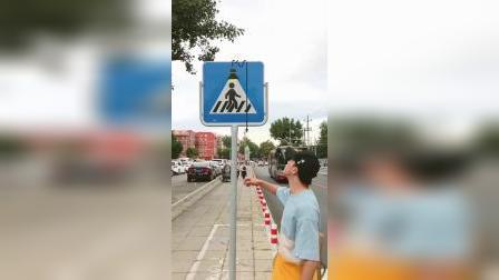 五毛钱特效:现实生活请爱护交通标志牌哈